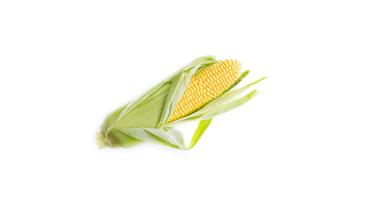 在咖喱日的愉快的国家玉米